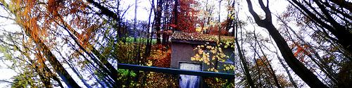 Herbst @ Greifswald und Umgebung, 2009