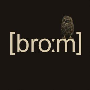 [broːm]