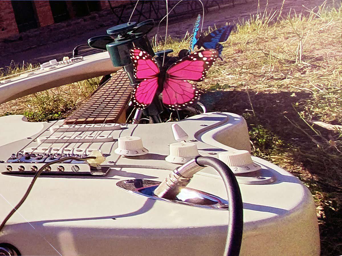 "Audio-Installation ""Flutterbies"" by Martin Hiller, Detail"