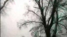 Huey Walker & Bassbees - Snowlands